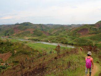 Socio-demographic, not environmental, risk factors explain fine-scale spatial patterns of diarrhoeal disease in Ifanadiana, rural Madagascar